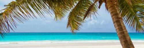 Immagine per la news Rimini, azienda festeggia i successi portando i dipendenti ai Caraibi
